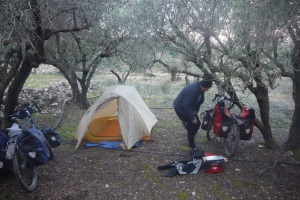 Camping in the olive orchard.