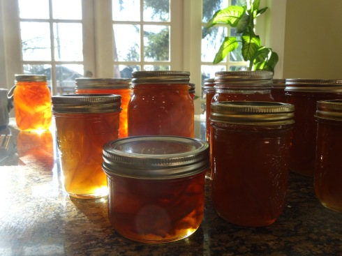 We made three batches of marmalade. It was Seville orange season.